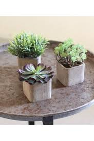 of 3 small artificial succulents in square pots