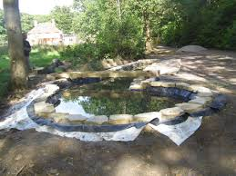 native uk pond plants koi pond construction pond stars uk ltd ditch to dream