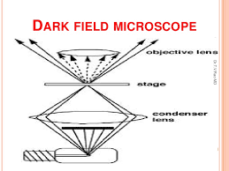 dark field microscopy microscope ug