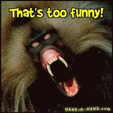 Baboon Meme - baboon gifs search find make share gfycat gifs