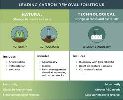 what is carbon removal u2014 center for carbon removal