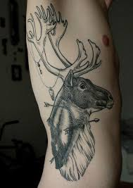 mer enn 25 bra ideer om deer head tattoo på pinterest