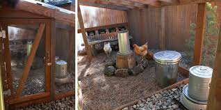 the hammock keeping your coop clean community chickens