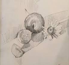 89 best sketchbooks sarah sedwick images on pinterest pencil