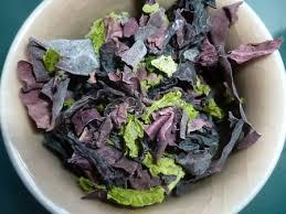 comment cuisiner les algues pourquoi cuisiner les algues et commentnourriture santé