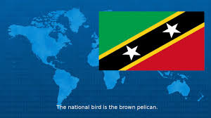 St Kitts Flag Saint Kitts And Nevis Wiki Youtube