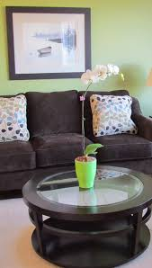 collection living room color schemes with brown furniture pictures