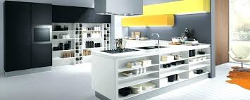 kitchen cabinets flushing ny kitchen cabinets in flushing ny spurinteractive com