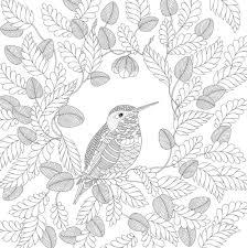 printable coloring books for adults animal coloring pages for adults best coloring pages for kids