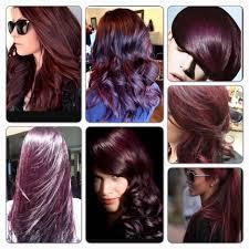 berina a14 dark brown violet hair color cream color permanent hair