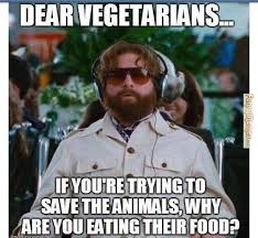 Vegan Meme - vegetarian meme great clean jokes