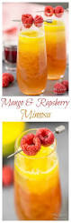 best 25 fruity alcoholic drinks ideas on pinterest fruity