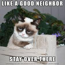 Grumpy Cat Meme Good - like a good neighbor grumpy cat meme