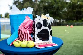 dog birthday party patriotic dog birthday party at orlando canine country club in