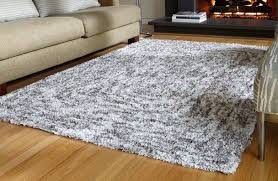 Area Rugs 12 X 12 10 X 12 Area Rugs Area Rugs 10 12 Home Assets Home Rugs Ideas