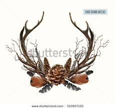 antler stock images royalty free images vectors