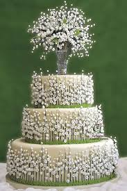 847 best tiered cakes images on pinterest tiered cakes amazing
