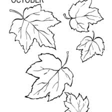 small leaf coloring page kids drawing and coloring pages marisa