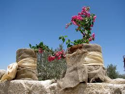 jordan mount nebo and jordan river 5 glimpses of the world