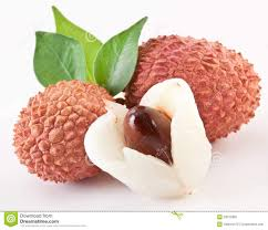 lychee fruit lychee clipart leche pencil and in color lychee clipart leche