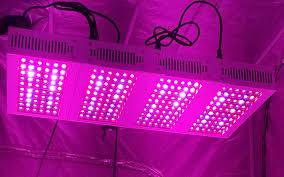 Cheap Led Grow Lights For Weed Led Grow Lights Make Growing Marijuana U0026 Hydroponics Easy