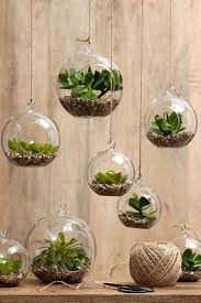 Indoor Gardening Ideas Indoor Gardening Ideas Landscaping Ideas For Living In Apartments