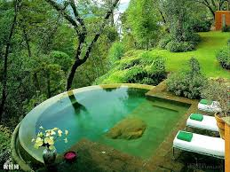 other backyard haven lounge peaceful relax pond green home pool