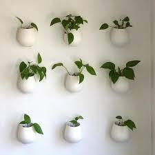 plant wall hangers indoor terrarium design inspiring wall plant pots wall plant pots wall