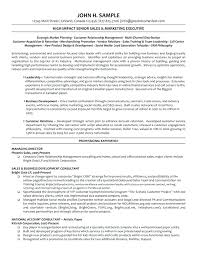 sales manager resume exles 2017 accounting 12 marketing director resume best executive resumes sales and
