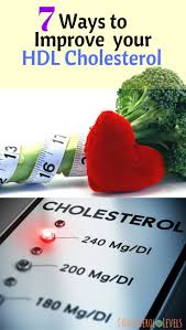 best 25 hdl cholesterol ideas on pinterest high cholesterol
