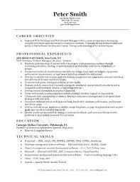 formal resume template formal resume template developer imagine exle word