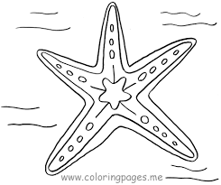 starfish coloring pages getcoloringpages com