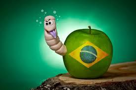 What Colour Is Brazil Flag Brazil U0027s Anti Corruption Minister Quits Over Corruption Probe