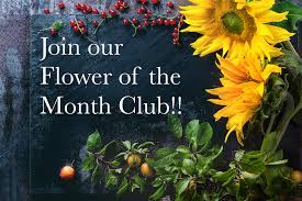 flower of the month club join our flower of the month club master s candles