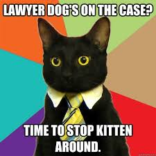 Lawyer Dog Meme - dog lawyer on the case cat humor