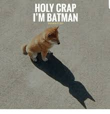 Im Batman Meme - holy crap i m batman bamsuccess batman meme on esmemes com