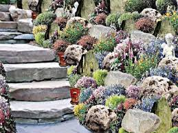 Rock Gardens On Slopes Rock Gardens Saturday Magazine The Guardian Nigeria Newspaper