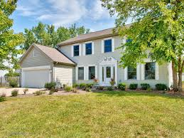 joe pepitone realtors pam mitrius downers grove real estate home