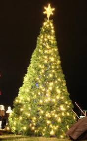 christmas tree bob rogers