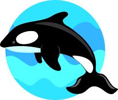 whale clipart 6827 free clipart images u2014 clipartwork