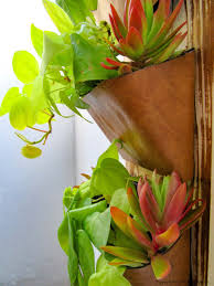 use old dvd cases to make a vertical garden ibc challenge a how clever old dvd cases have been re purposed to make a beautiful vertical