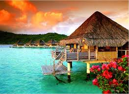 tropical island paradise other tropical island hut bora hibiscus paradise flowers