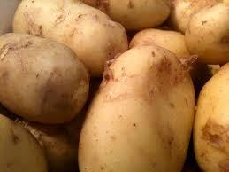 pommes de terre en robe de chambre au four pommes de terre en robe de ch recettes cookeo