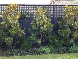 451 best partitions privacy fences images on pinterest privacy