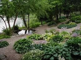 37 best gardening hosta tours u0026 resources images on pinterest