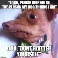 Lord Help Me Meme - tuna the dog phteven memes imgflip