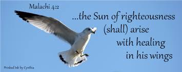 wings faith sickness u0026 healing u0027s jesus