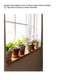 Apartment Plants Happier Houseplants How To Keep Indoor Plants Healthy U2014 Apartment Th U2026