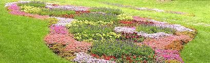 Us Zones For Gardening - porter family nurseries gardening tips