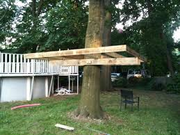 building your own tree house how to build a house flightless angels blog archive building a treehouse